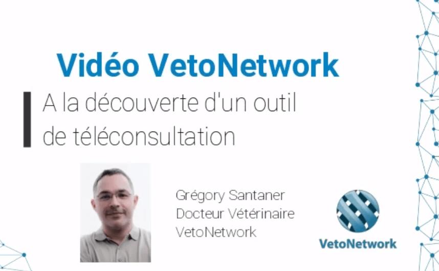 VideoTeleconsultation