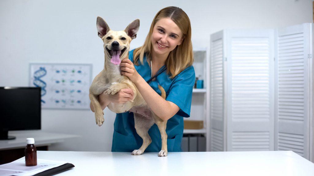 jeune vétérinaire heureuse