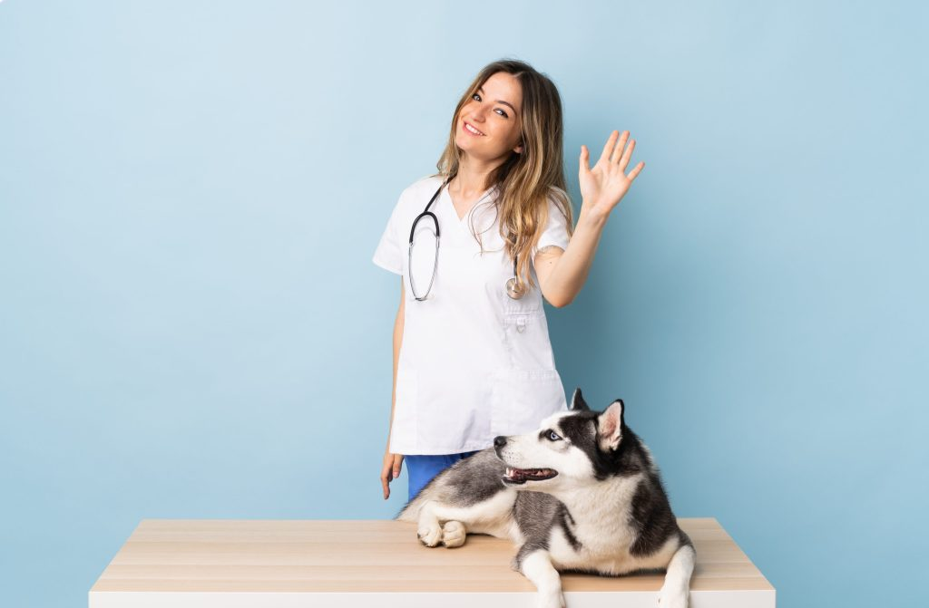 vétérinaire dit au revoir
