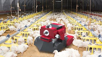 Octopus-Poultry-Safe-robot