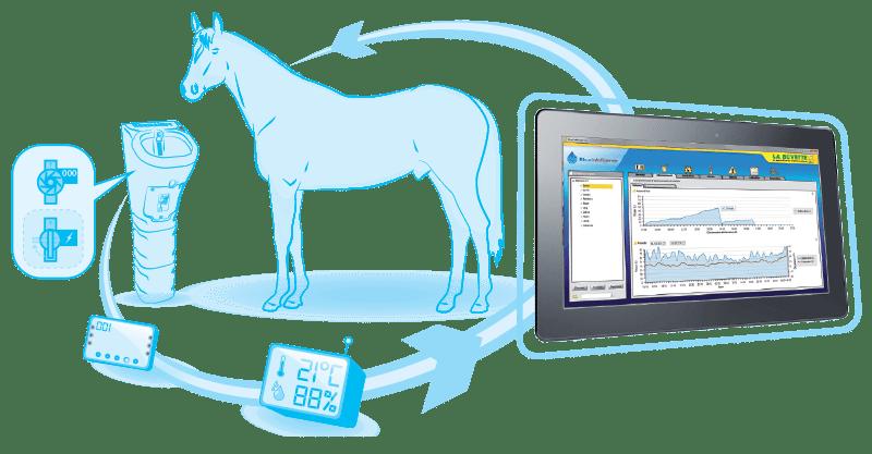 abreuvoir-connecté-chevaux
